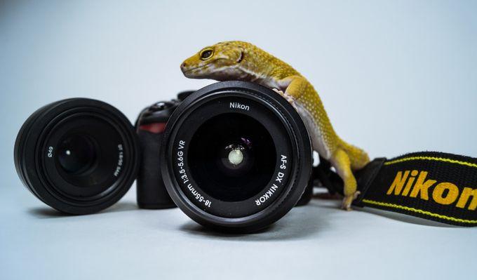 عکس تبلیغاتی، عکس صنعتی، عکاسی تبلیغاتی، عکاسی صنعتی